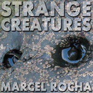 Strange Creatures cover